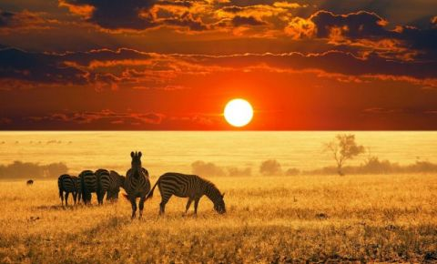 Top 10 destinatii turistice in Africa