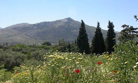 Campul de Lupta de la Maraton si Movila Funerara din Atena