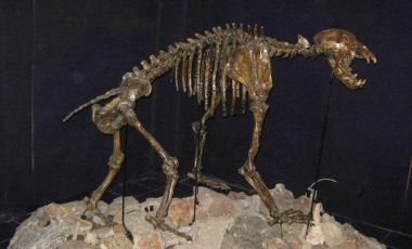 Muzeul de Speologie si Forme Carstice din Chepelare