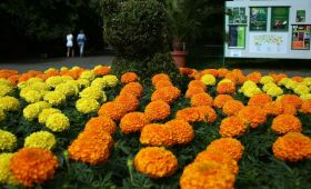 Gradina Botanica si Zoologica din Budapesta