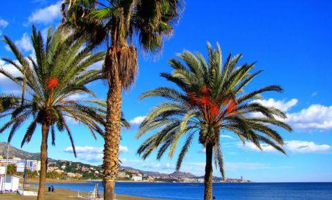 Vara asta se poarta...Andaluzia!