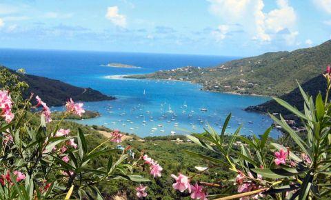 Coral Bay (VI)