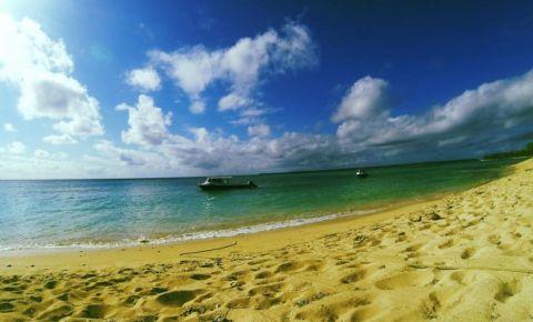 Insula Foa