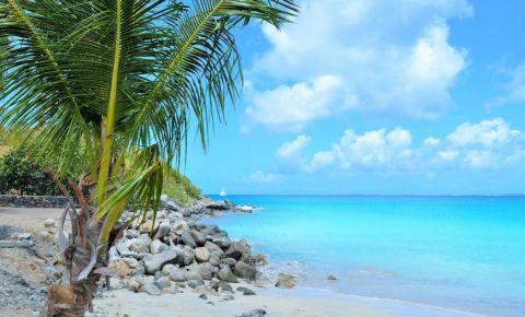 Insula Martinica
