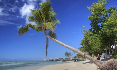 Insula Savaii
