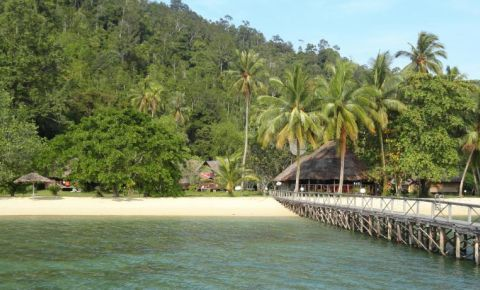 Insula Sumatra