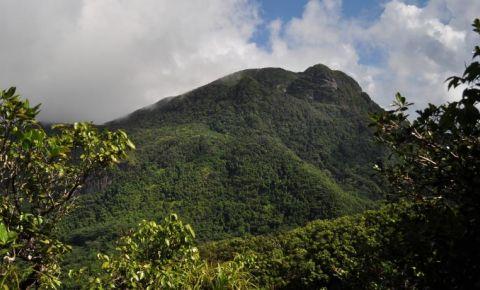 Parcul National Morne Seychellois
