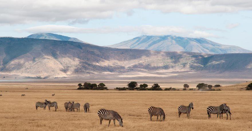 Craterul Ngorongoro