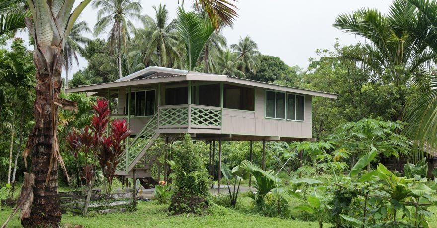 Insula Buka