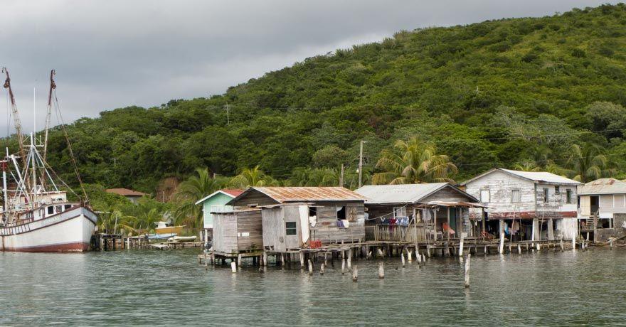 Insula Guanaja