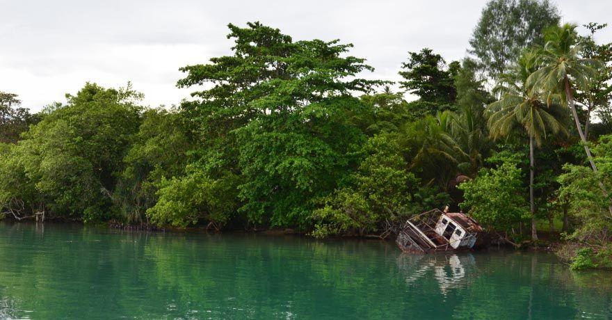 Insula Manus