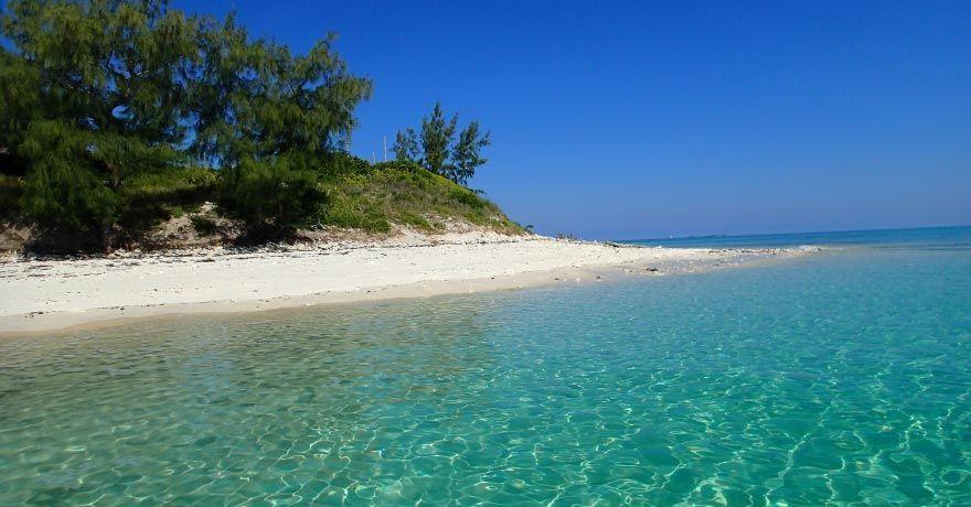 Insula Mozambic