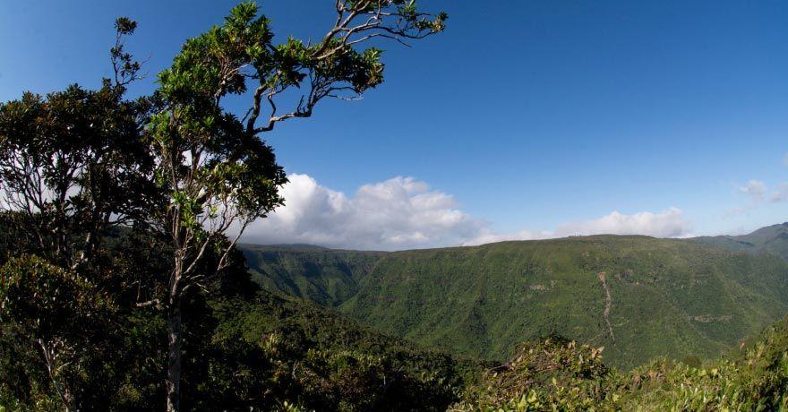Parcul National Black River Gorges