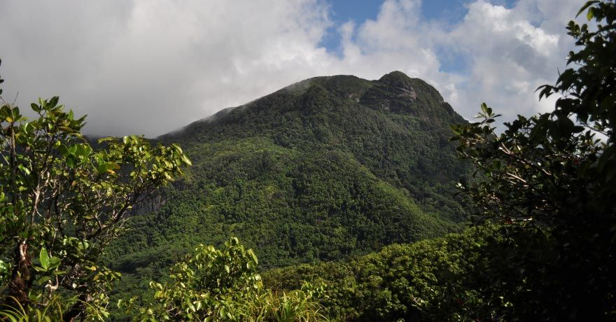Parcul National Morne Seychellois