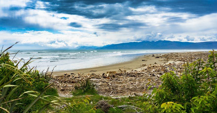 Westport (NZ)