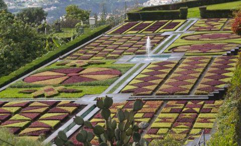 Gradina Botanica Funchal din Insula Madeira