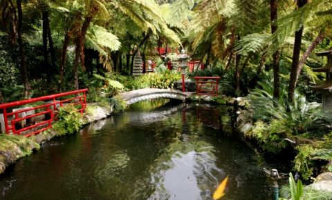 Gradina Tropicala Monte Palace din Insula Madeira