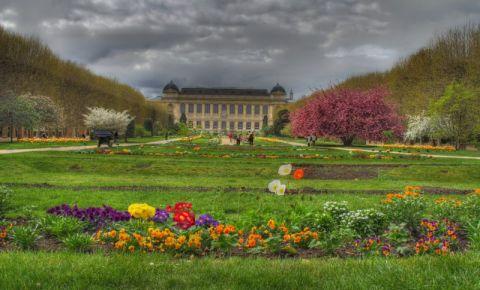 Gradina Botanica din Paris