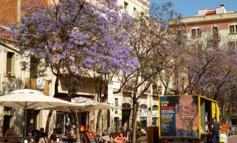 Districtul Gracia din Barcelona