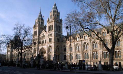 Muzeul de Istorie Naturala din Londra