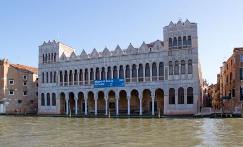 Palatul Fondaco dei Turchi din Venetia