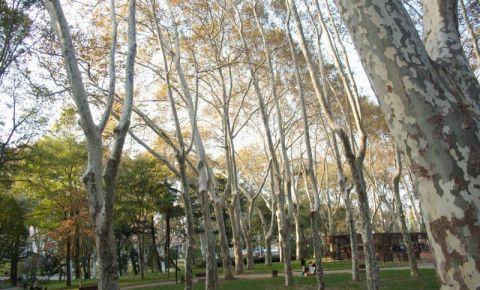 Parcul Gulhane din Istanbul