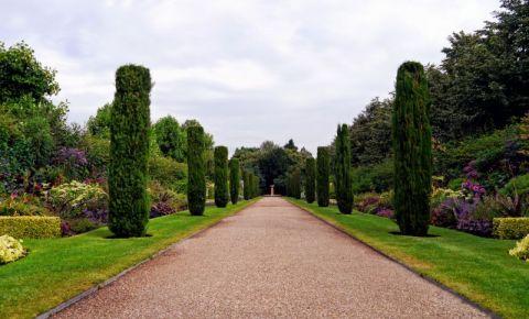Parcul Regent's Park din Londra