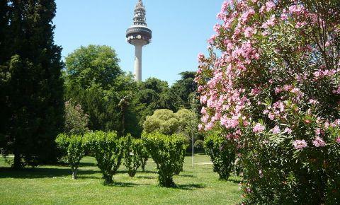 Parcul Quinta Fuente Del Berro din Madrid