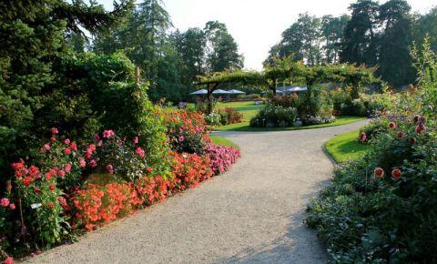 Gradina Botanica din Geneva