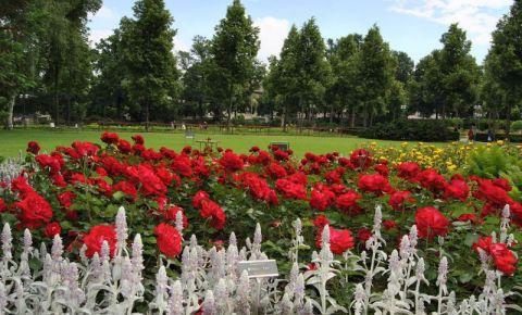 Gradina Trandafirilor din Berna