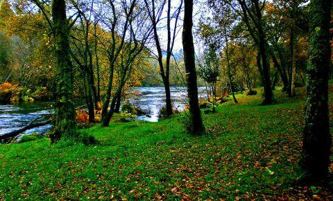 Lacurile din Burgas