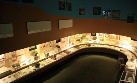 Muzeul de Istorie Naturala din Basel