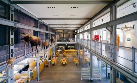 Muzeul Inatura din Dornbirn