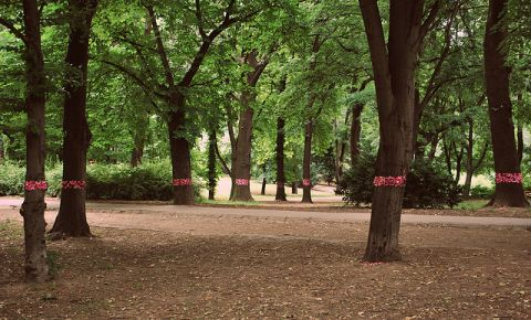 Parcul Municipal din Budapesta