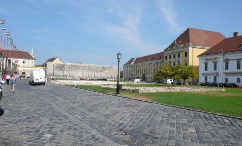 Piata Sfantul Gheorghe din Budapesta