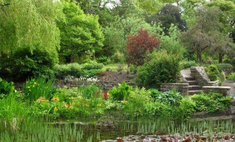 Gradina Botanica Nationala din Dublin