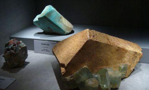 Muzeul de Istorie Naturala din Torino