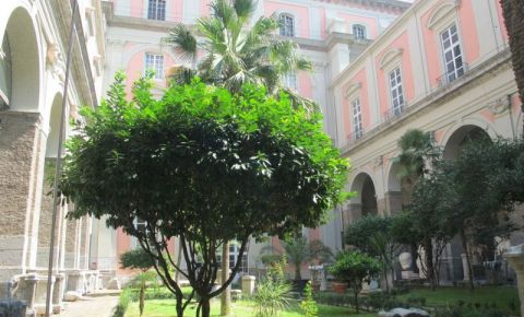 Muzeul National de Arheologie din Napoli