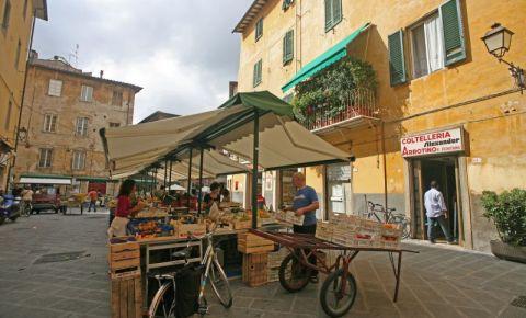 Piata in Pisa