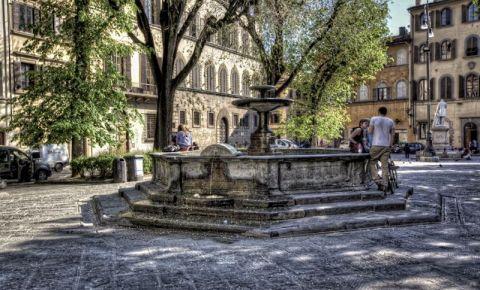 Piata Santo Spirito din Florenta