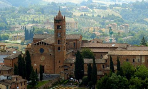 Biserica Santa Maria dei Servi din Siena