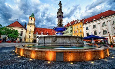 Fantana Roland din Bratislava