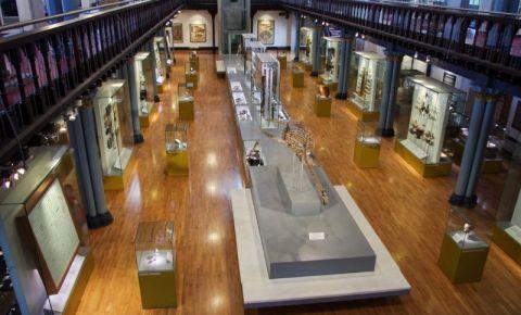 Muzeul Hunterian din Glasgow