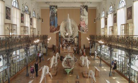 Muzeul Oceanografic din Monaco