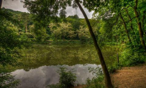 Parcul Forestier din Bratislava