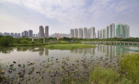 Parcul Wetland din Hong Kong
