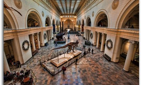 Muzeul de Istorie Naturala din Chicago