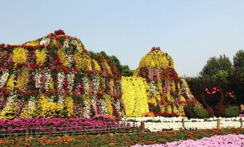 Parcul Gongqing din Shanghai