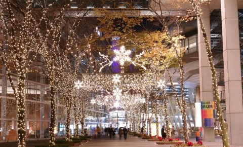 Piata Pentax din Tokyo