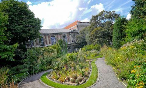 Gradina Botanica din Anvers